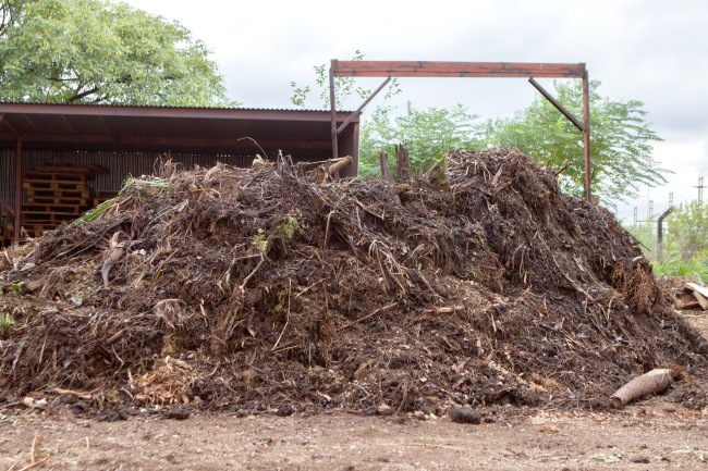 compost factory
